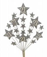Star age 21st birthday cake topper decoration all in silver - free postage